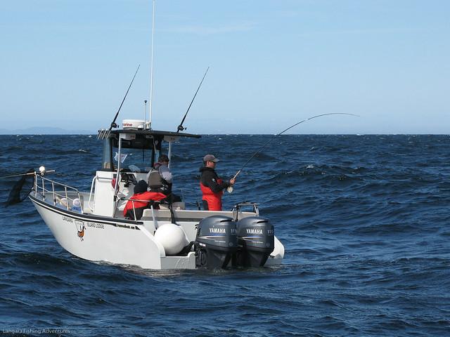 Salmon fishing at langara island lodge flickr photo for Langara fishing lodge