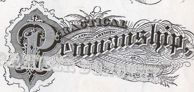 Lettering victorian calligraphy lessons this