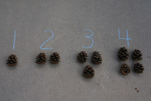 Outdoor cards and counters for 1-10 would have exactly 55 pinecones as a control of error.