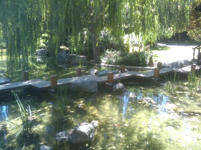 Japanese friendship garden san jose flickr photo sharing for Japanese koi garden san jose