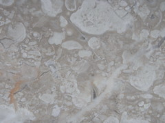 Marble - free texture