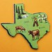 Texas Puzzle Shape