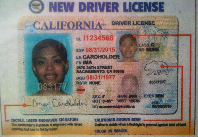 Estate Az License Get In Undocumented For Driver Real Your Ny