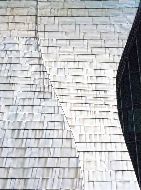Guggenheim Lines and Curves V