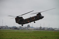 boeing vertol ch-46 sea knight(0.0), aircraft(1.0), aviation(1.0), helicopter rotor(1.0), boeing ch-47 chinook(1.0), helicopter(1.0), vehicle(1.0), military helicopter(1.0), air force(1.0),