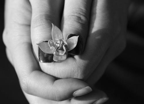 Hand+Flower