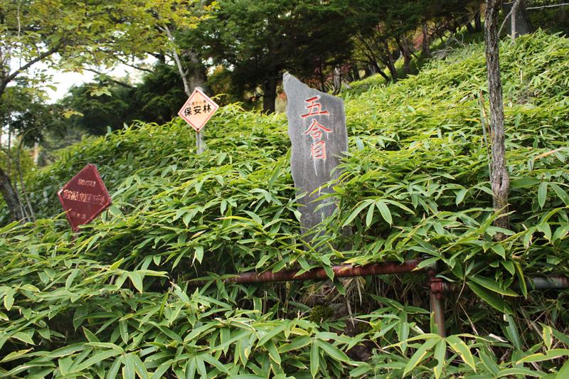 20101002_男体山_0023