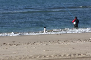 Imagen de Playa de la Cortadura cerca de Cádiz.