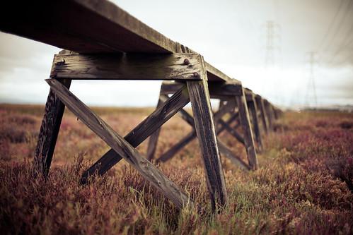 california ca landscape wetlands bayarea solano