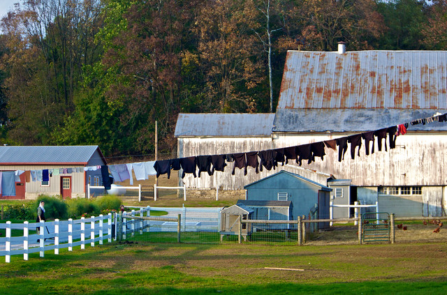 Mennonite / Amish Laundry: aka Big Clothesline for Black Shirts