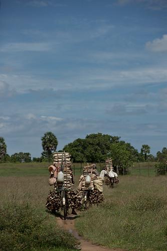 bicycle geotagged lka transport creativecommons srilanka kiran firewood northeastern springm markusspring bibble5