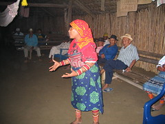Sat, 09/04/2005 - 21:12 - Kuna woman participating in community workshop on traditional knowledge, Panama