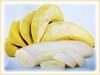 Musa acuminata (Dwarf Cavendish Banana, Ornamental Banana, Pisang Serendah)