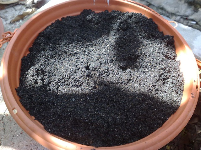 6 add soil to cover the pot flickr photo sharing for Clay potting soil