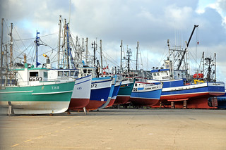 DGJ_8589 - Boats at Rest