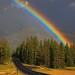 IMG_4806 Rainbow after Storm, Yellowstone National Park by ThorsHammer94539
