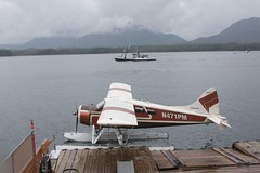 aviation, airplane, vehicle, seaplane,