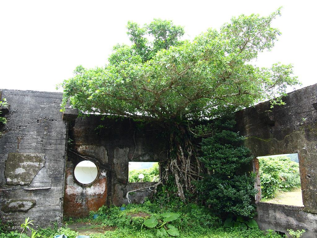 蘭嶼 Day 2 氣象台廢墟