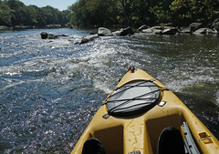 whitewater kayaking(0.0), paddle(0.0), vehicle(1.0), rapid(1.0), river(1.0), sports equipment(1.0), kayak(1.0), boating(1.0), kayaking(1.0), watercraft(1.0), sea kayak(1.0), boat(1.0),