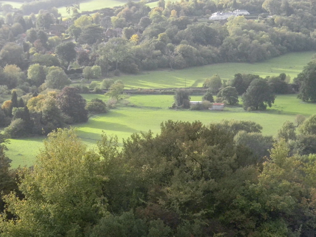 View into Norbury Park Box Hill Circular