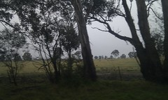 Marulan Countryside