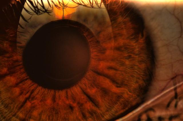 macro eye hdr