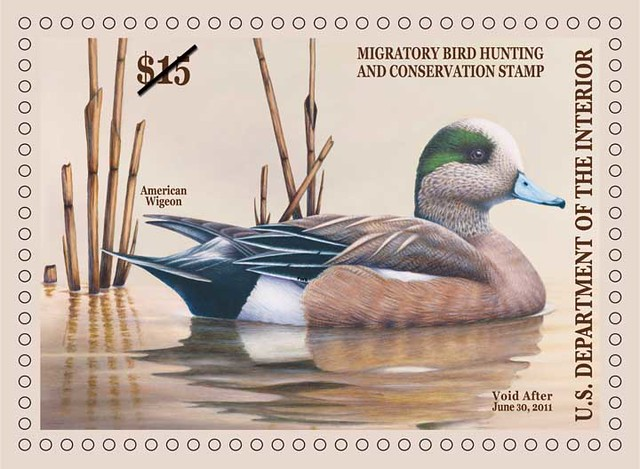 2010-11 Federal Duck Stamp
