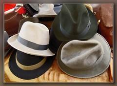 brown, clothing, fedora, hat, cowboy hat, headgear,