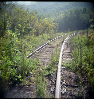 Overgrown railroad siding. Red Hill VA, September 2010
