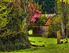 Farm and Rural