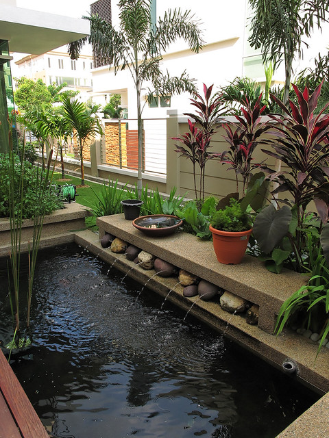 Indoor fish pond and patio flickr photo sharing for Balcony koi pond