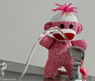 Sock Monkey shows Flamingo how to use the bubbler | 53/365