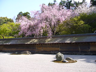 Rock garden of Ryōanji temple