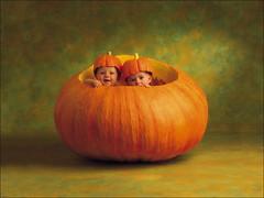 carving(0.0), painting(0.0), produce(0.0), still life photography(0.0), still life(0.0), jack-o'-lantern(0.0), pumpkin(1.0), calabaza(1.0), winter squash(1.0),