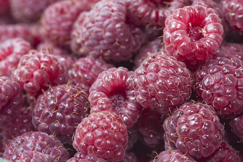 raspberries frozen, red, sweetened