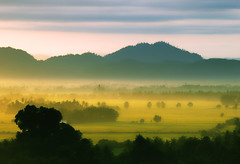 [フリー画像素材] 自然風景, 田園・農場, 霧・霞, 山 ID:201212261800