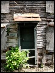 Virginia ~ Millwood
