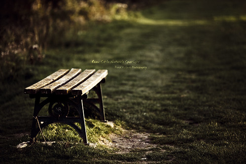Come Sit In Natures Spotlight