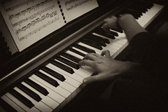 piano, musical keyboard, keyboard, jazz pianist, monochrome photography, monochrome, black-and-white, player piano, electronic instrument,