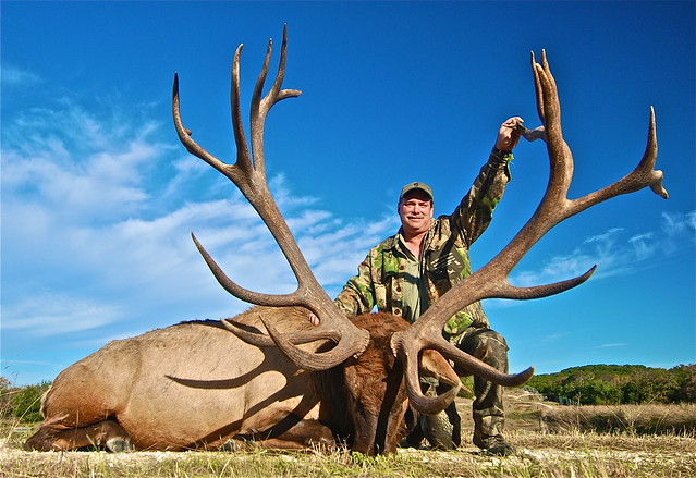 2010 World Record Bull Elk http://www.flickr.com/photos/huntingtexastrophies/5091638665/