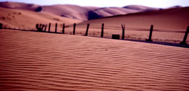 Liwa desert dunes, UAE