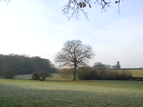 Frosty field with windmill