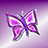 the The world of butterflies (P1/C3) group icon