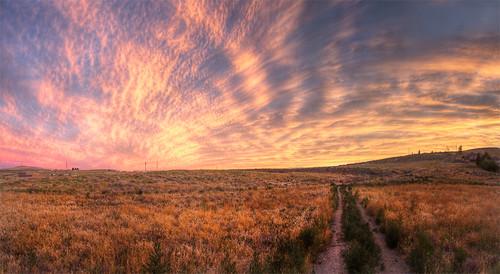 road sunset sky bush weeds desert path hill wa thompson hdr highdynamicrange tumbleweed kennewick photomatix