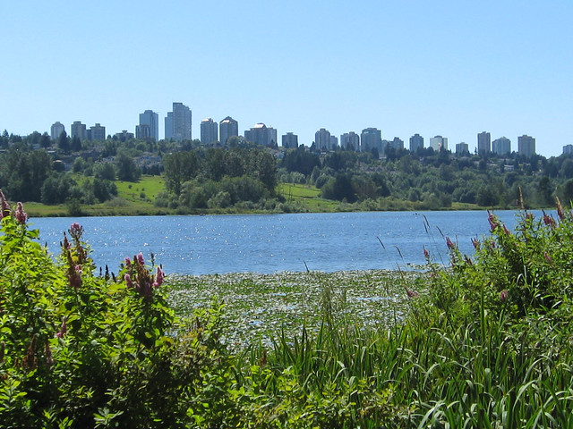 Burnaby from Deer Lake Park