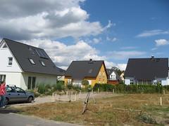 Schnurböcke auf dem Grundstück