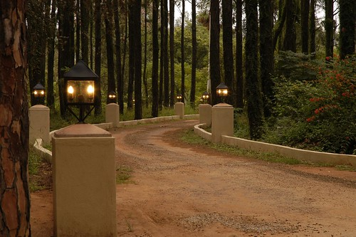 Jatinga Country Lodge, White River, South Africa