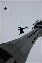 Bungy jumping from the Sky Tower !