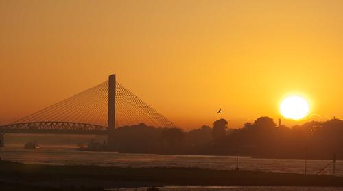 bridge sunrise brug a2 waal martinusnijhoffbrug
