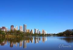 Reflexos de Londrina (para Dircinha)